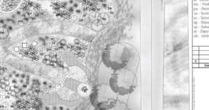 A detail from a planting plan detailing an expanse of largely perennial planting